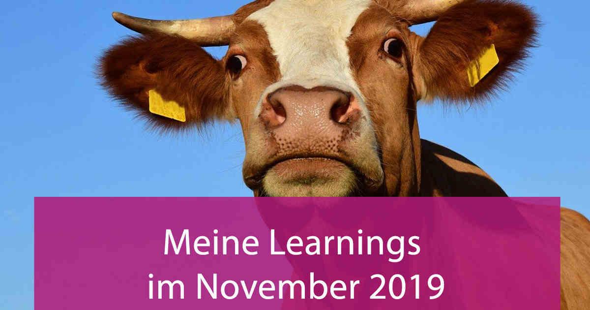 Meine Learnings im November 2019